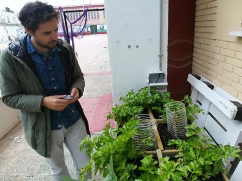 Implementing Prototype Special Garden