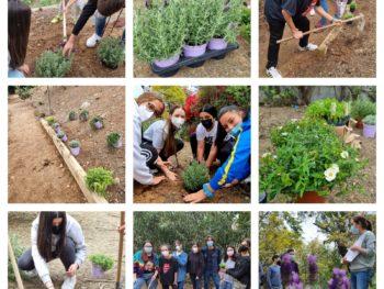 Sendero ecológico Programa Impulsa